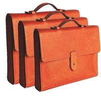 Men´s leather briefcase